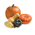 Courges_edited.png