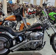 2006 Harley Softail