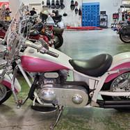 2008 Ridley Autoglide 750cc