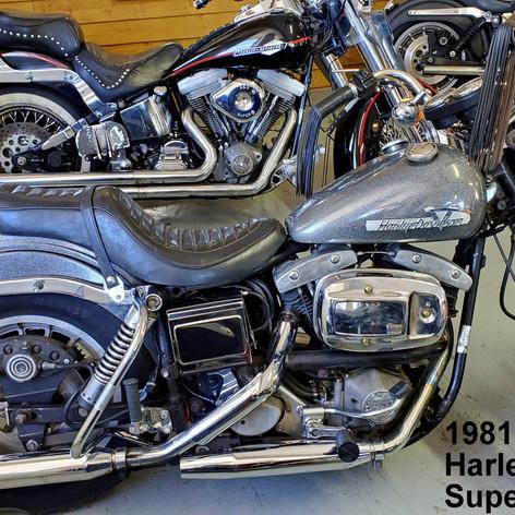 1981 Harley Superglide
