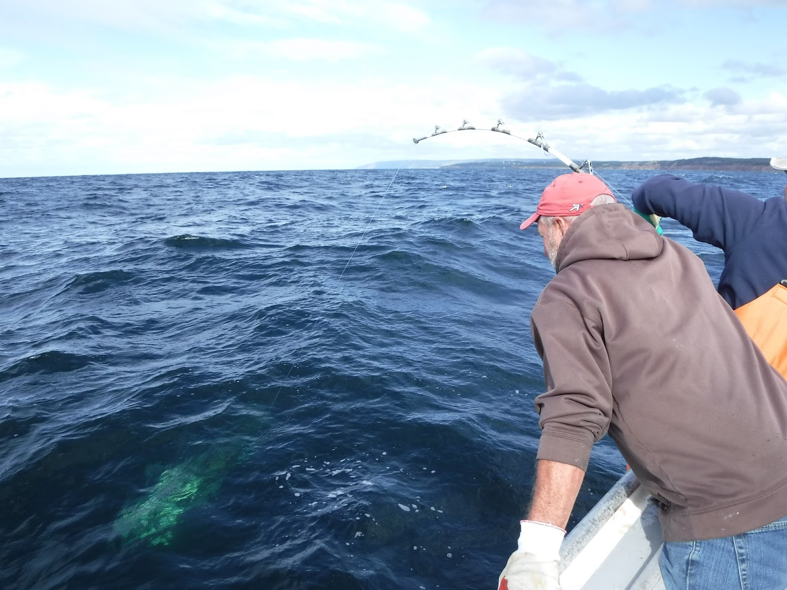 Capt. Dennis Cameron locks eyes with a bluefin