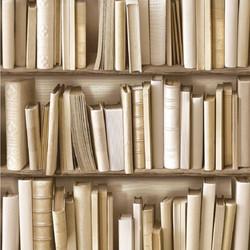 Bücher+Neutral3.jpg