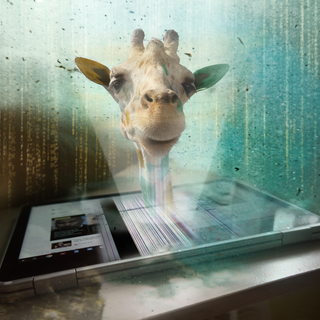 giraffe-hacker.png