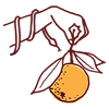 Cicala_Logo_Hand_Burgundy_MECH-01.png