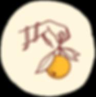 Cicala_Logo_Coin_Logo_01-01.png