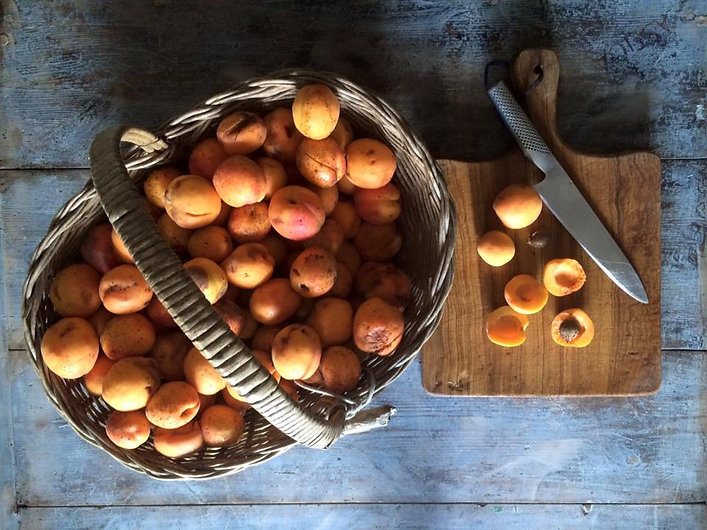 forestariafruit.jpg