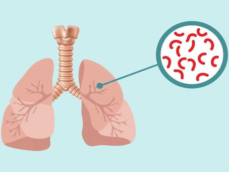 Dia Mundial de Combate à Tuberculose.
