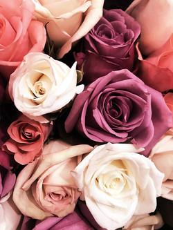 flowers-3660043_1920