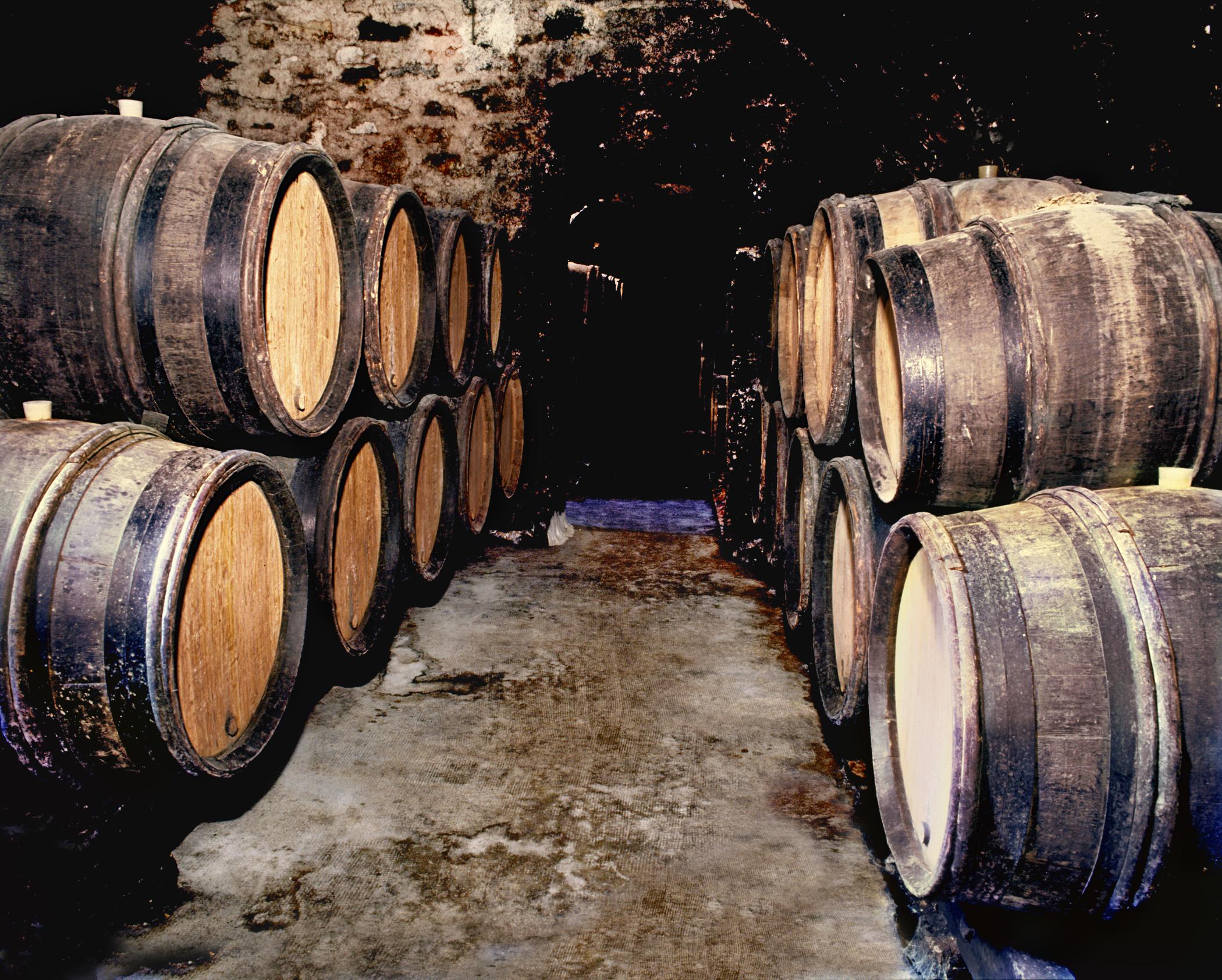 11 Chablis cellar 5