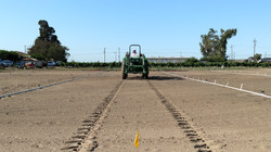 Dissipation Application to Bare Soil