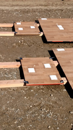 Vinyl Flooring Transfer