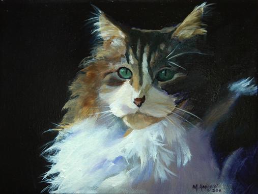 Stanton cat