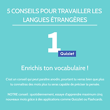 5 conseils langues.png