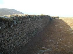 trenishoe wall 2