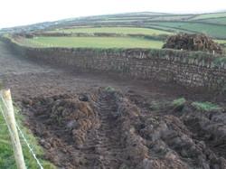 trentishoe wall 4