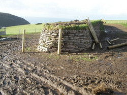 trentishoe wall 1