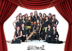 The Bellydancers' Course 2014
