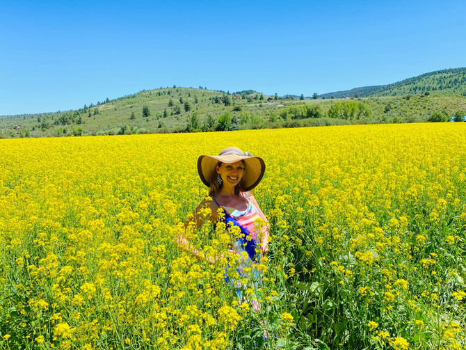 Yellowstone and Grand Teton Adventure: Part Two or Raspberries, Flower Fields and Verdant Meadows