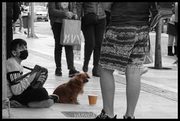 Beggar in Heraklion, Crete, Greece