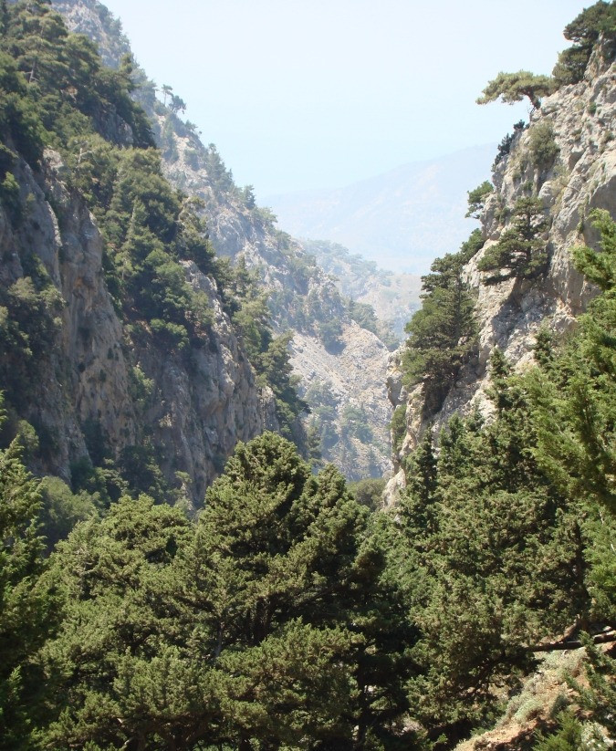 The gorge of Agia Irini lies to the western end of the island of Crete, Greece and provides a quieter day out in a beautiful Cretan natural habitat.