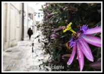 The streets of Heraklion, Crete, Greece