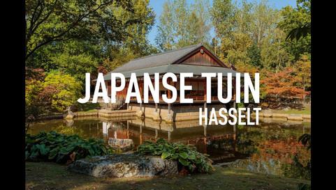 Japanse Tuin Hasselt