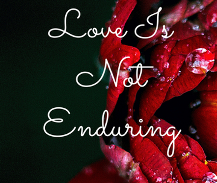 Love Is Not Enduring The Book