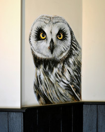 Short-Eared Owl at The Viking, Acrylic mural, 2016