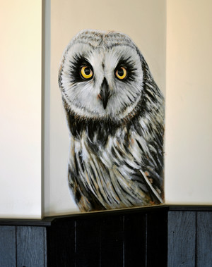Short-Eared Owl at The Viking, Acrylic mural, 2016
