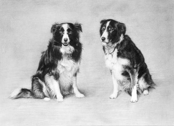 'Mya & Floss' Pet Portrait, 2011