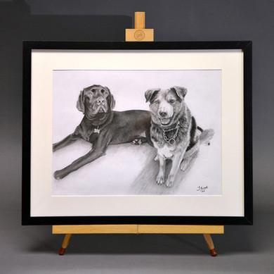 'Freddie & Buddy', framed finished portrait