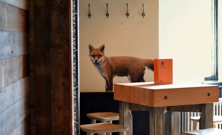 Red Fox at The Viking, Acrylic mural, 2016
