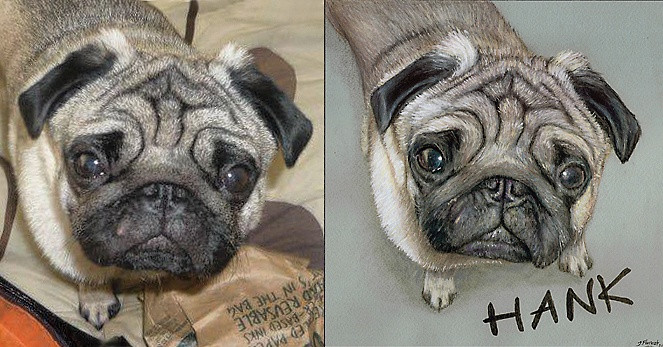 'Hank' comparison