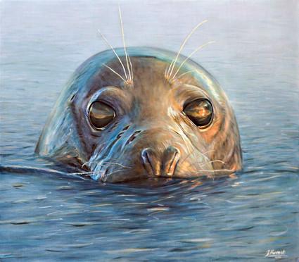 Seal, Acrylic, 2016