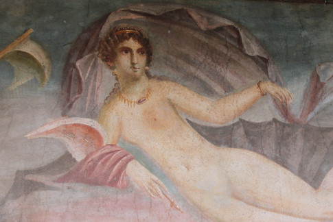 House of Venus in the Shell