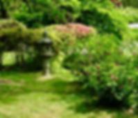 GardenHistory.png