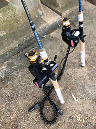 Accessible fishing poles with motorized reels