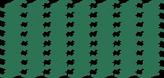nc-leaf-background.png