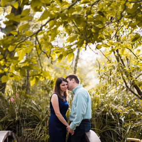 Gainesville Wedding Photography // Kanapaha Botanical Gardens { Amanda & Justin }