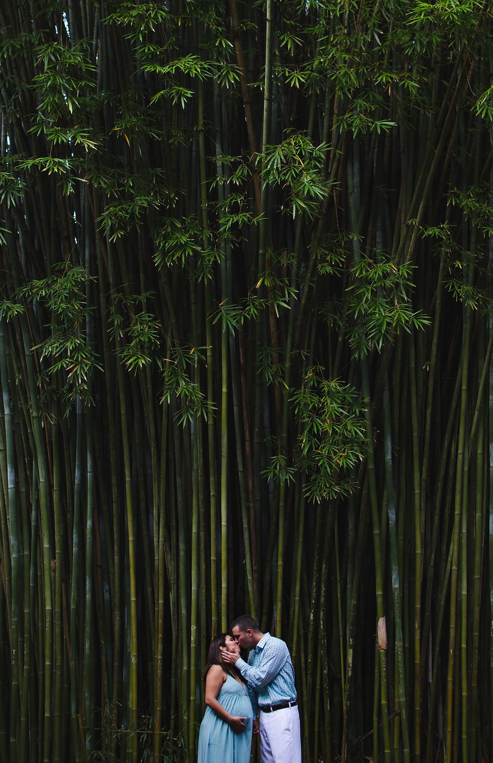 Bamboo Garden Maternity