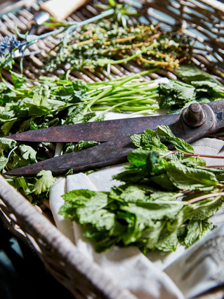 Sanderson_Paint_March18_19_Kitchen_Herbs