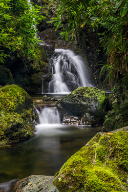 Tollymore Forest Waterfall - REF:9