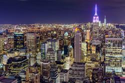 Alive In New York - REF:98