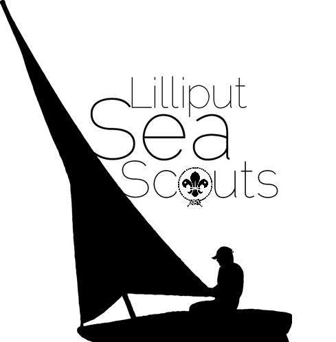 LSS Logo_edited