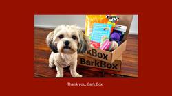 A - Bark Box