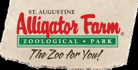 alligator farm.png