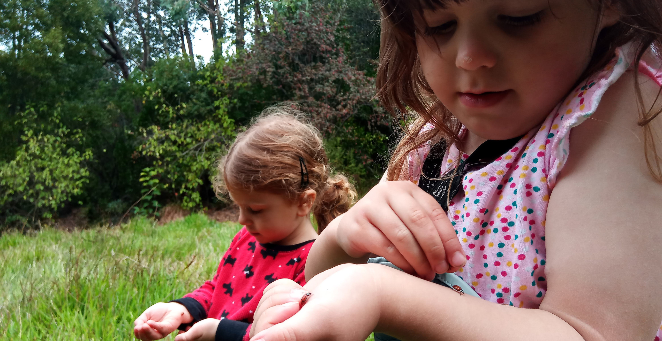 Mina and Luka hold their hands still and look at ladybugs that are crawling on them.