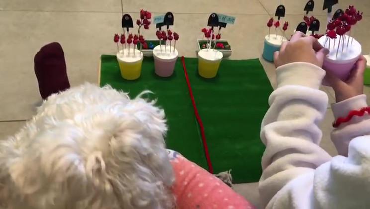 VIDEO-2020-03-29-11-34-28.mp4