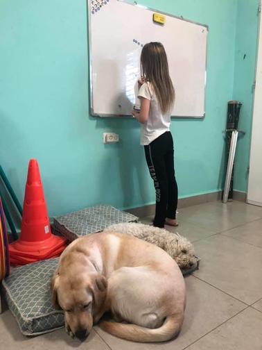 לומדים עם דובה.png