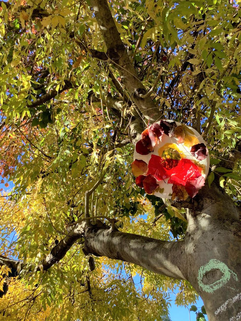 Suncatcher eye tree.jpg